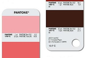 Example of a Pantone® swatch book